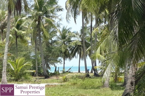 land for sale, real estate, property, Lipa Noi, Koh Samui, Thailand, Property for sale
